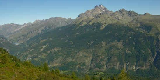 Bosco dell'Aleve