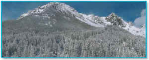 calendario 2007: inverno