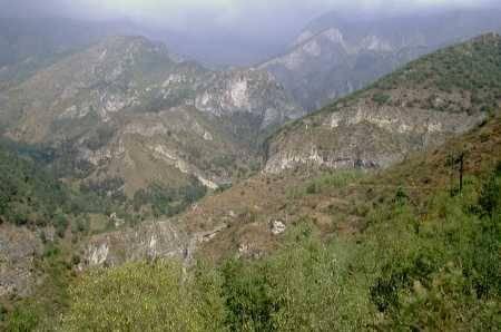 Il bosco di Camoglieres