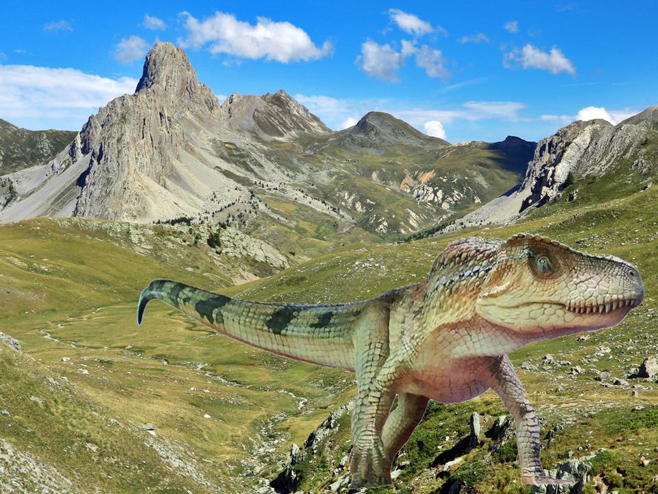 Ticinosuchus Gardetta