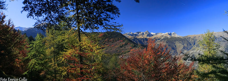 Foliage Valle Maira