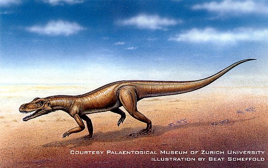 Impronte dinosauro