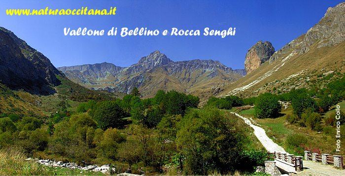 Rocca Senghi nel Vallone di Bellino