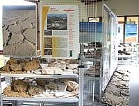 Museo Geologia della Gardetta