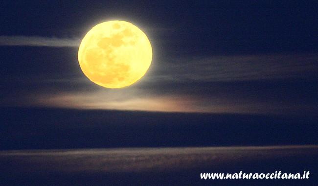 L'alba della Luna piena (Foto Enrico Collo)